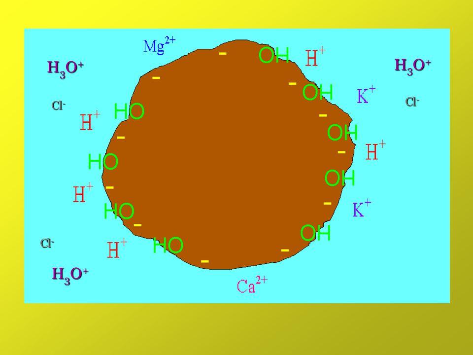 H3O+H3O+H3O+H3O+ H3O+H3O+H3O+H3O+ H3O+H3O+H3O+H3O+ Cl -