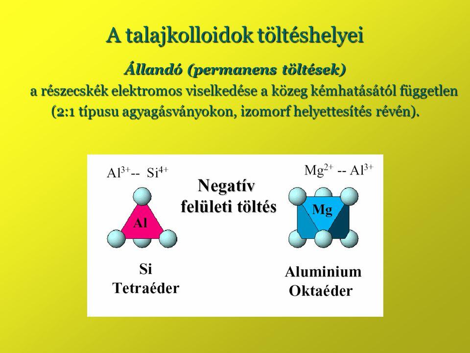A talajkolloidok töltéshelyei Állandó (permanens töltések) a részecskék elektromos viselkedése a közeg kémhatásától független (2:1 típusu agyagásványo