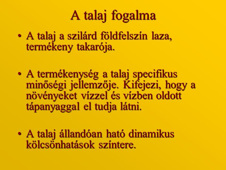 Szilikátok Metakovasav (H 2 SiO 3 ): HO Si = O HO Ortokovasav (H 4 SiO 4 ): HOOH Si HOOH Polikovasavak:HO OH OH HO - Si – O -Si – O – Si - OH HOOH OH