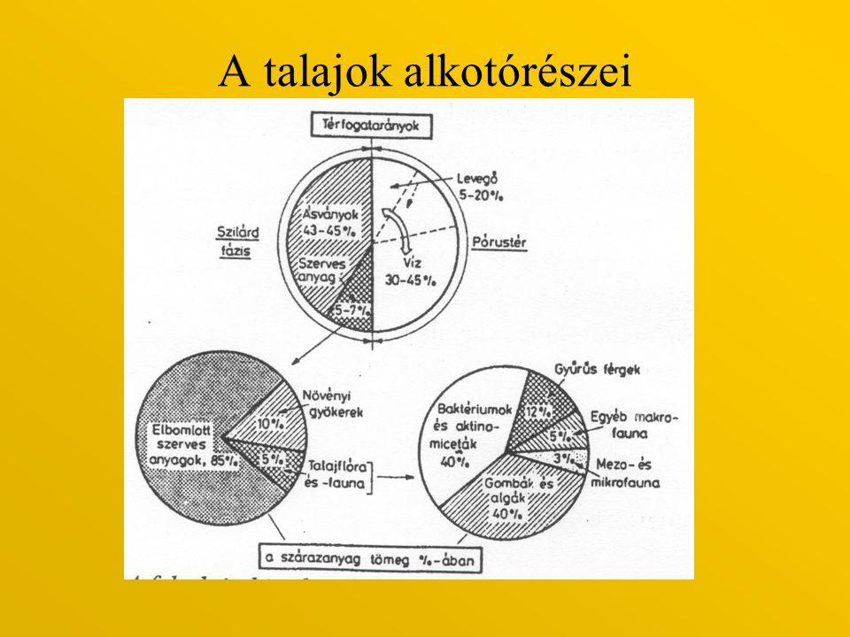 3.Karbonátok a, Kalcit CaCO 3 b, Dolomit CaMg(CO 3 ) 2 c, Sziderit FeCO 3 d, Szóda Na 2 CO 3 *H 2 O