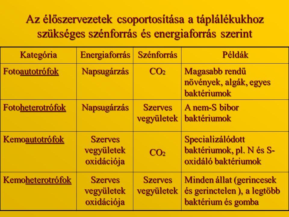Az élőszervezetek csoportosítása a táplálékukhoz szükséges szénforrás és energiaforrás szerint KategóriaEnergiaforrásSzénforrásPéldák Fotoautotrófok N