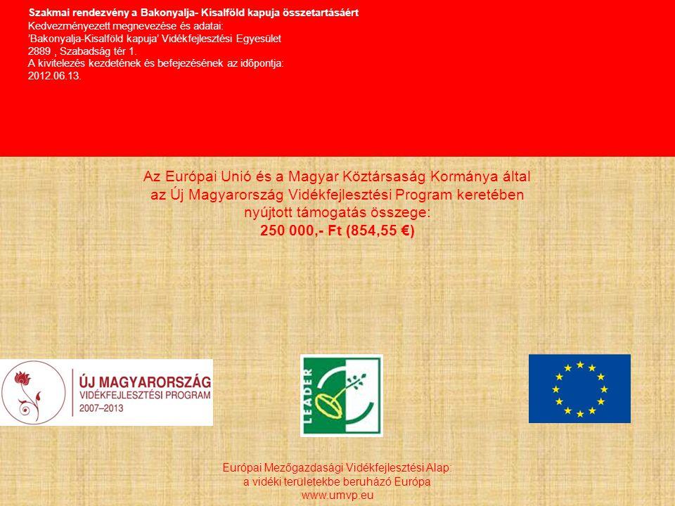 Szakmai rendezvény a Bakonyalja- Kisalföld kapuja összetartásáért Kedvezményezett megnevezése és adatai: 'Bakonyalja-Kisalföld kapuja' Vidékfejlesztési Egyesület 2889, Szabadság tér 1.