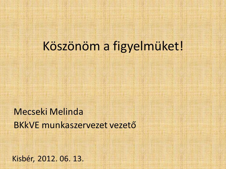 Köszönöm a figyelmüket! Mecseki Melinda BKkVE munkaszervezet vezető Kisbér, 2012. 06. 13.