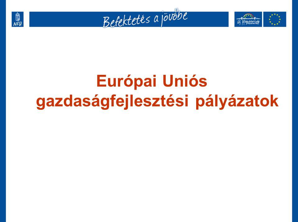 Európai Uniós gazdaságfejlesztési pályázatok