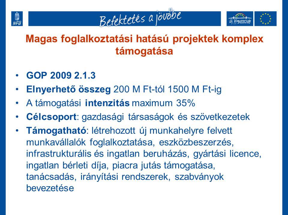 Magas foglalkoztatási hatású projektek komplex támogatása GOP 2009 2.1.3 Elnyerhető összeg 200 M Ft-tól 1500 M Ft-ig A támogatási intenzitás maximum 3