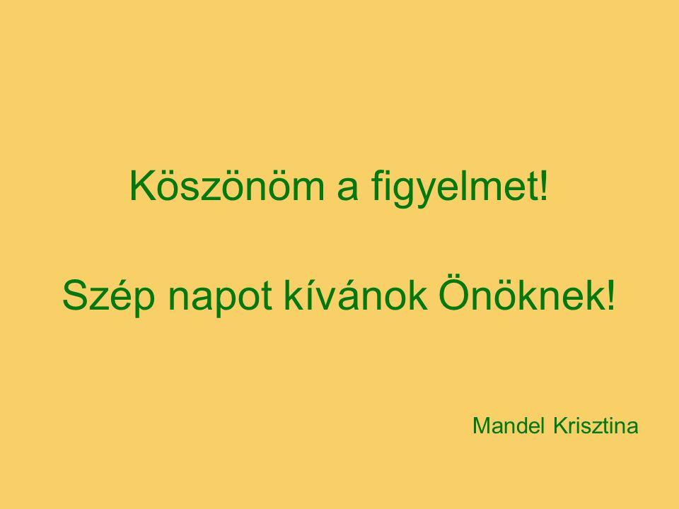 Köszönöm a figyelmet! Szép napot kívánok Önöknek! Mandel Krisztina