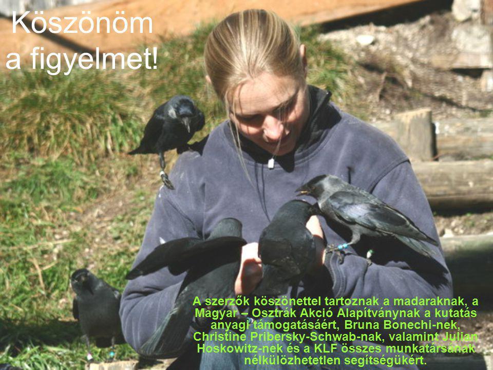 Köszönöm a figyelmet! A szerzők köszönettel tartoznak a madaraknak, a Magyar – Osztrák Akció Alapítványnak a kutatás anyagi támogatásáért, Bruna Bonec