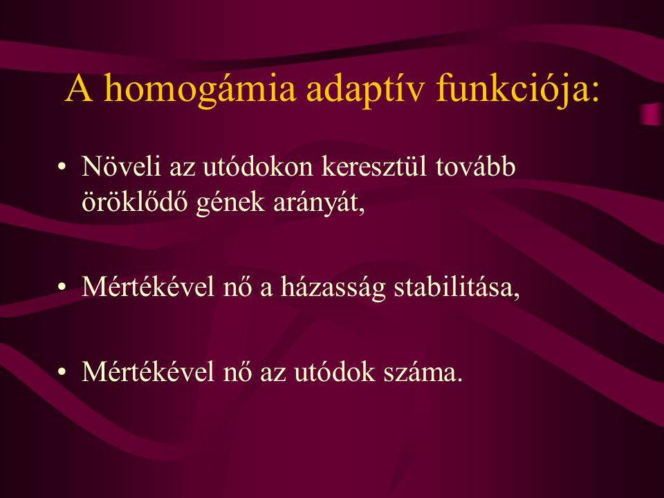 Homogámia, beltenyészet Homogámia egy ponton túl beltenyészetet okozna (a nagyfokú genetikai hasonlóság miatt) ha az inceszt tabuk, azaz a rokonok közötti házasság tilalma nem állna fenn.