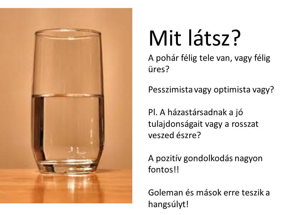 Mit látsz. A pohár félig tele van, vagy félig üres.