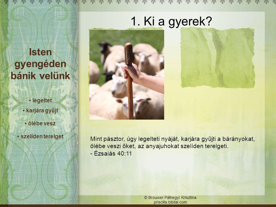 Engedelmesség = bizalom Engedetlenség = bizalmatlanság © Brouwer Pálhegyi Krisztina priscilla.bibliai.com 4.