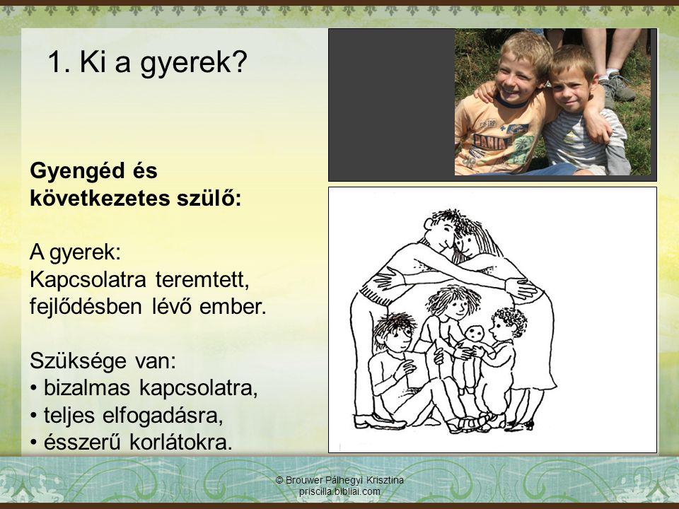 1. Ki a gyerek? Gyengéd és következetes szülő: A gyerek: Kapcsolatra teremtett, fejlődésben lévő ember. Szüksége van: bizalmas kapcsolatra, teljes elf