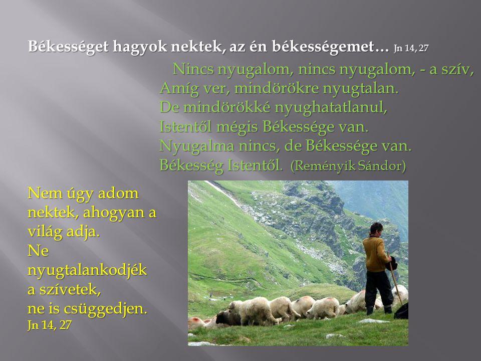 Békességet hagyok nektek, az én békességemet… Jn 14, 27 Nincs nyugalom, nincs nyugalom, - a szív, Amíg ver, mindörökre nyugtalan.