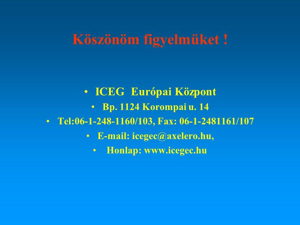 Köszönöm figyelmüket ! ICEG Európai Központ Bp. 1124 Korompai u. 14 Tel:06-1-248-1160/103, Fax: 06-1-2481161/107 E-mail: icegec@axelero.hu, Honlap: ww