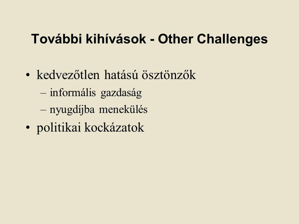 További kihívások - Other Challenges kedvezőtlen hatású ösztönzők –informális gazdaság –nyugdíjba menekülés politikai kockázatok