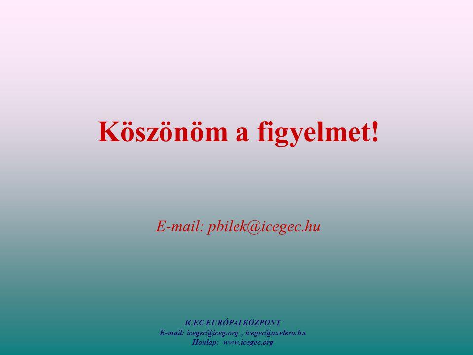 ICEG EURÓPAI KÖZPONT E-mail: icegec@iceg.org, icegec@axelero.hu Honlap: www.icegec.org Köszönöm a figyelmet.