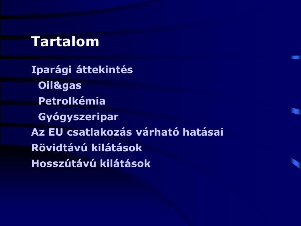 Az EU csatlakozás hatásai a magyar vegyiparra Oil&gas Liberalizált üzemanyagpiac (1991) Liberalizált földgázpiac (2004) Hazai kitermelés folyamatosan csökken Függőség az orosz alapanyagtól Magas versenyképességű finomítók Évi 3-5%-os piacnövekedés a régióban Regionális expanzió