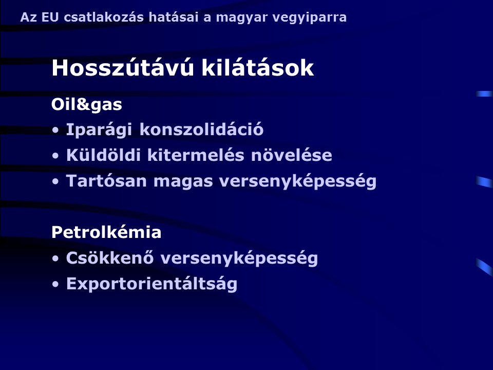 Az EU csatlakozás hatásai a magyar vegyiparra Finomvegyipar A finomvegyipar jelentősége nő Növekvő versenyképesség Recycling technikák Gyógyszeripar Klinikai teszt bázisok Önálló originális termék nem valószínű Specializáció egy terápiás területre