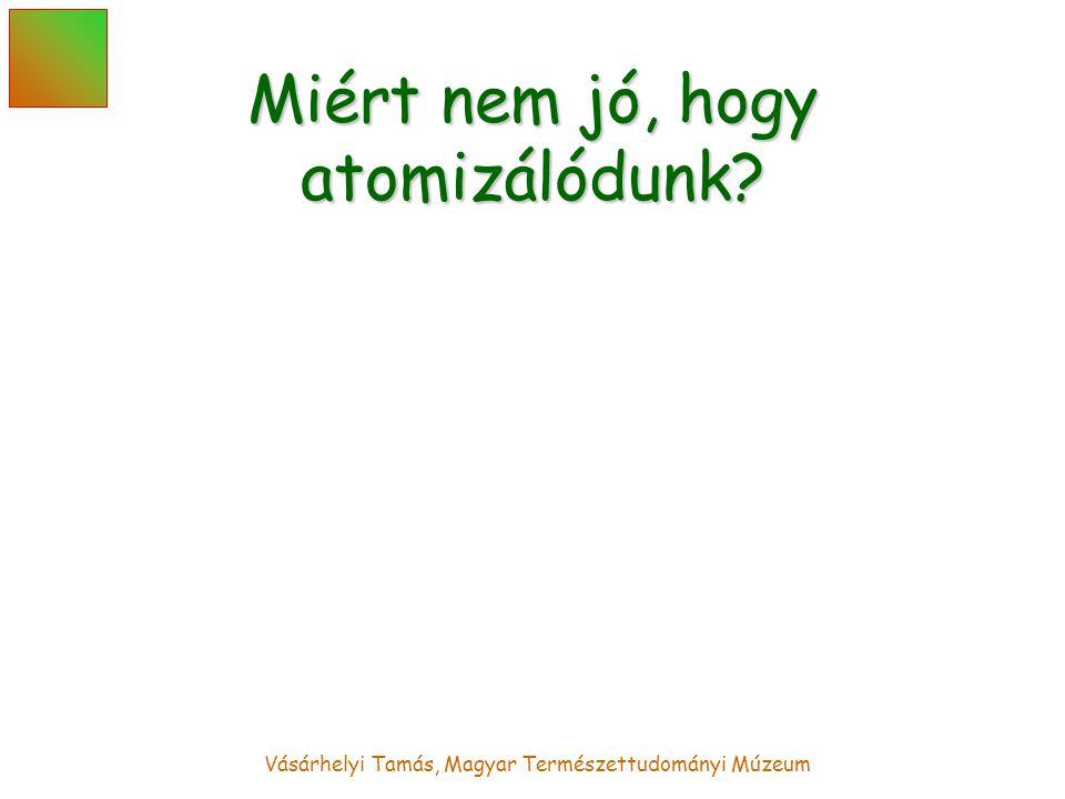 Vásárhelyi Tamás, Magyar Természettudományi Múzeum Miért nem jó, hogy atomizálódunk?