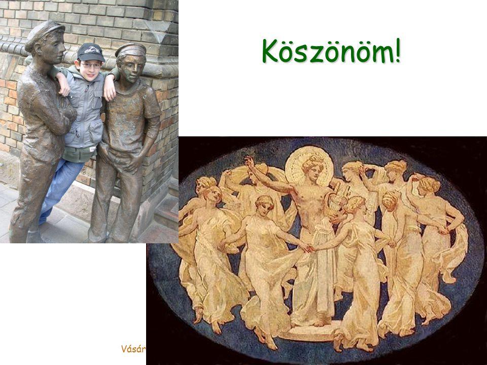 Vásárhelyi Tamás, Magyar Természettudományi Múzeum Köszönöm!