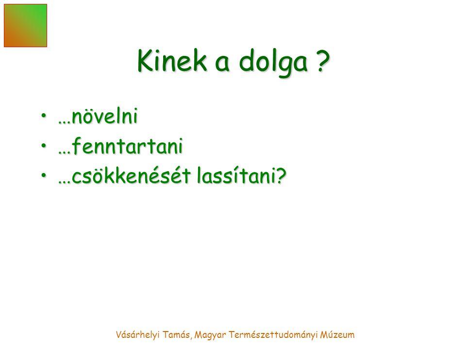 Vásárhelyi Tamás, Magyar Természettudományi Múzeum Kinek a dolga .