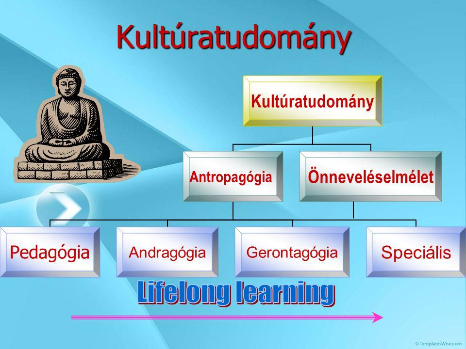 Kultúratudomány