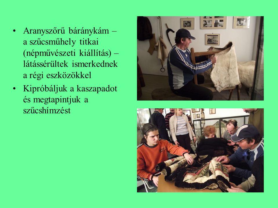 Aranyszőrű báránykám – a szűcsműhely titkai (népművészeti kiállítás) – látássérültek ismerkednek a régi eszközökkel Kipróbáljuk a kaszapadot és megtapintjuk a szűcshímzést