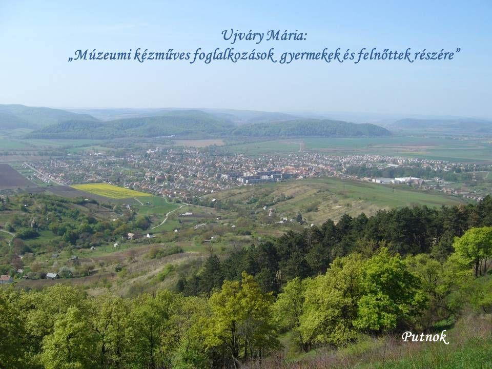 Borsod-Abaúj-Zemplén Megye Múzeumai Gömöri Múzeum, Holló László Galéria