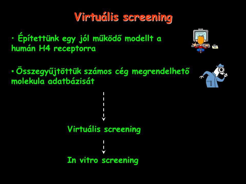 Virtuális screening Építettünk egy jól működő modellt a humán H4 receptorra Összegyűjtöttük számos cég megrendelhető molekula adatbázisát Virtuális screening In vitro screening