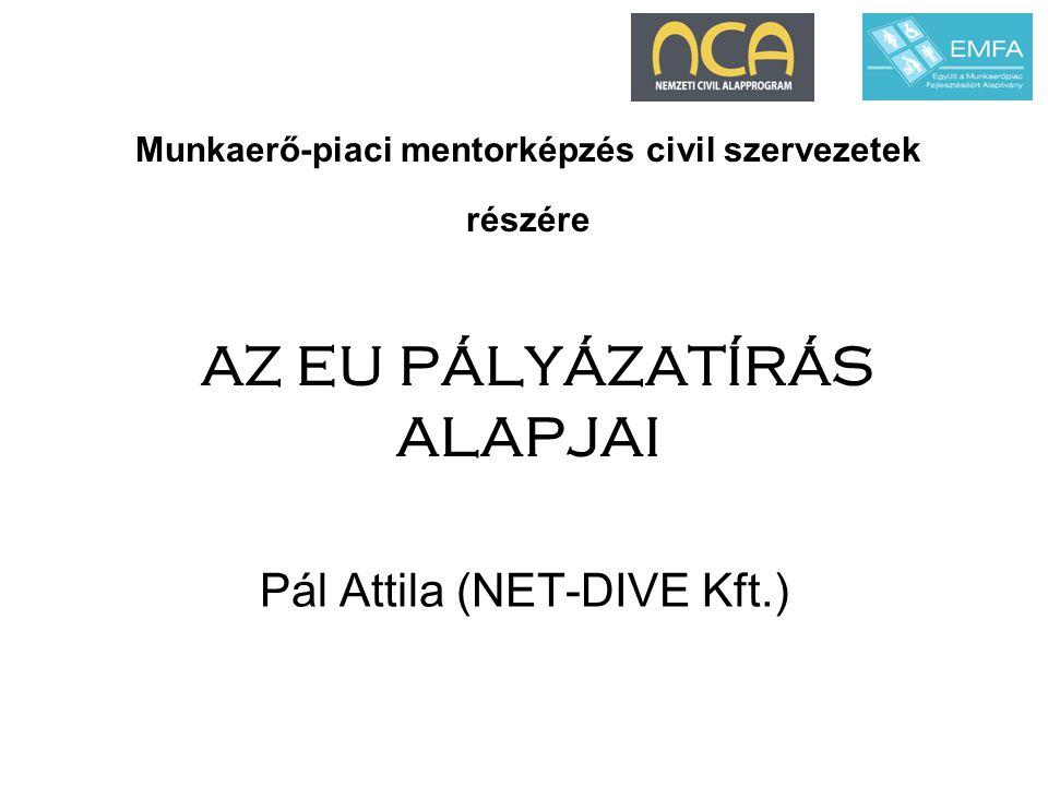 Munkaerő-piaci mentorképzés civil szervezetek részére AZ EU PÁLYÁZATÍRÁS ALAPJAI Pál Attila (NET-DIVE Kft.)