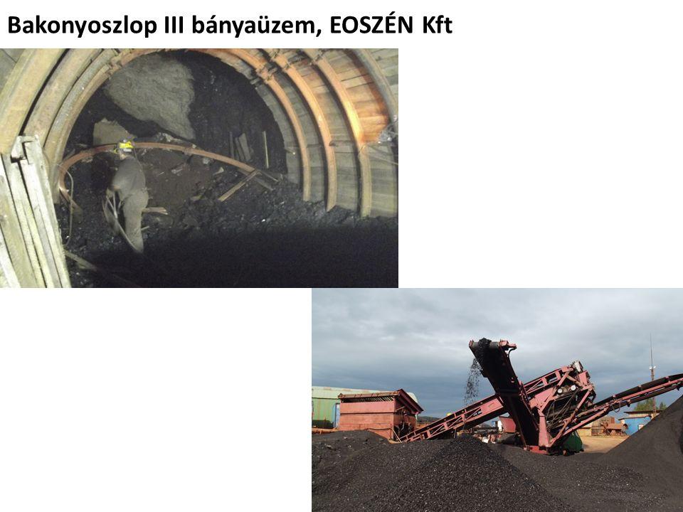 Bakonyoszlop III bányaüzem, EOSZÉN Kft