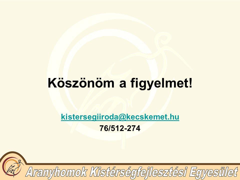 Köszönöm a figyelmet! kistersegiiroda@kecskemet.hu 76/512-274