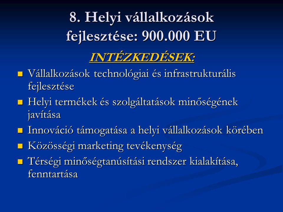 8. Helyi vállalkozások fejlesztése: 900.000 EU INTÉZKEDÉSEK: Vállalkozások technológiai és infrastrukturális fejlesztése Vállalkozások technológiai és