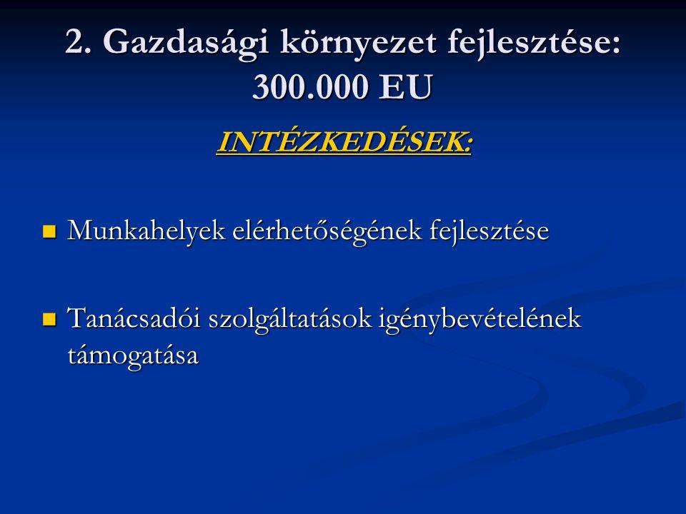 2. Gazdasági környezet fejlesztése: 300.000 EU INTÉZKEDÉSEK: Munkahelyek elérhetőségének fejlesztése Munkahelyek elérhetőségének fejlesztése Tanácsadó