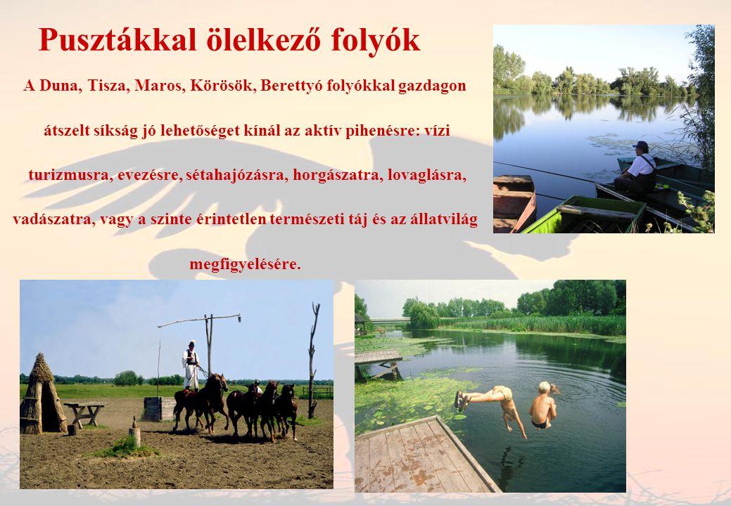 Pusztákkal ölelkező folyók A Duna, Tisza, Maros, Körösök, Berettyó folyókkal gazdagon átszelt síkság jó lehetőséget kínál az aktív pihenésre: vízi tur