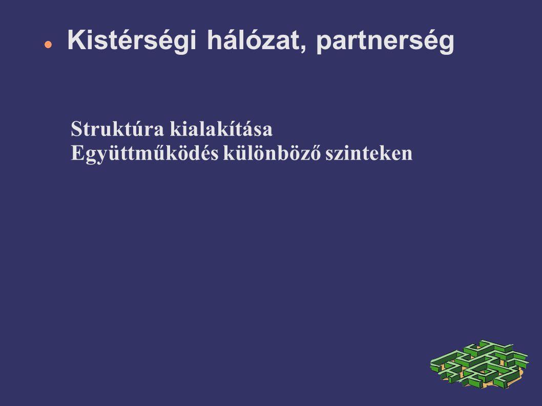 Kistérségi hálózat, partnerség Struktúra kialakítása Együttműködés különböző szinteken