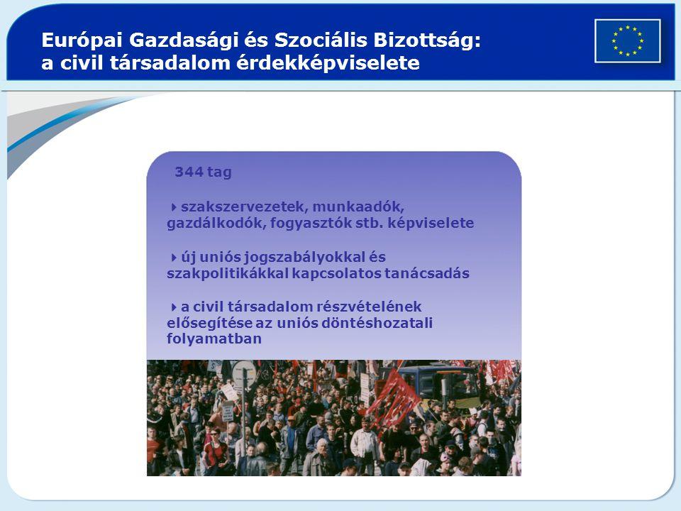 Európai Gazdasági és Szociális Bizottság: a civil társadalom érdekképviselete  344 tag  szakszervezetek, munkaadók, gazdálkodók, fogyasztók stb.