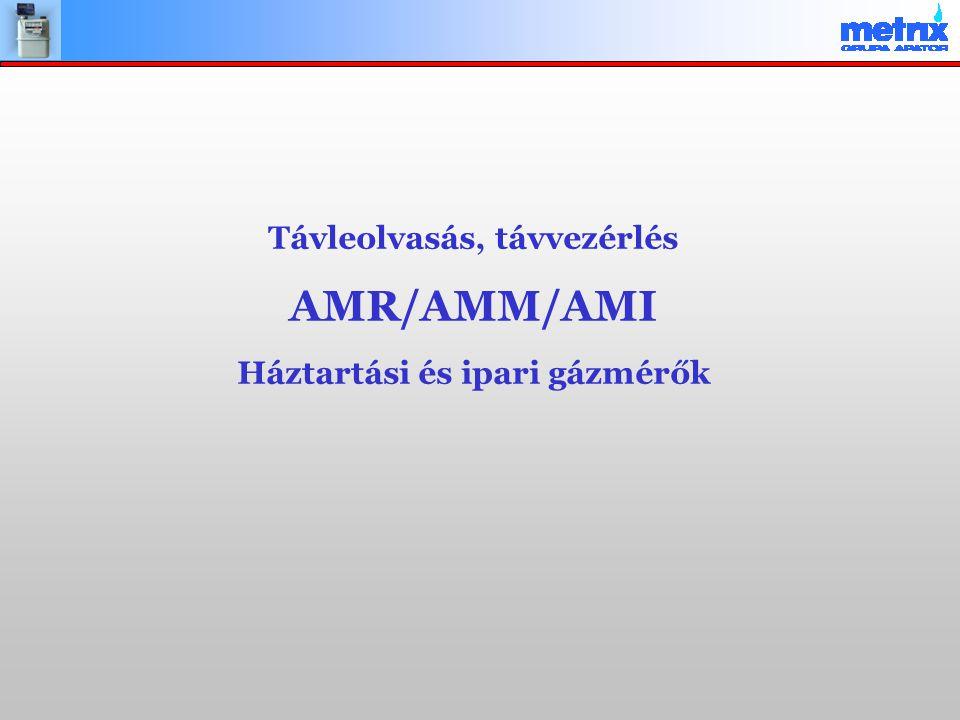 Távleolvasás, távvezérlés AMR/AMM/AMI Háztartási és ipari gázmérők
