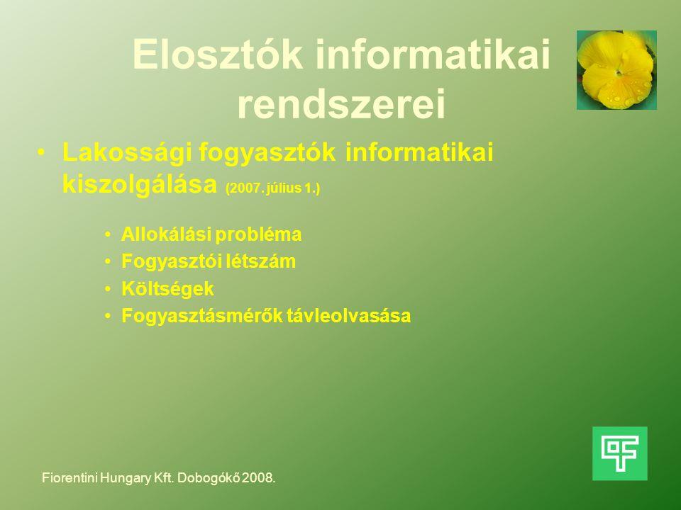 Elosztók informatikai rendszerei Lakossági fogyasztók informatikai kiszolgálása (2007. július 1.) Allokálási probléma Fogyasztói létszám Költségek Fog