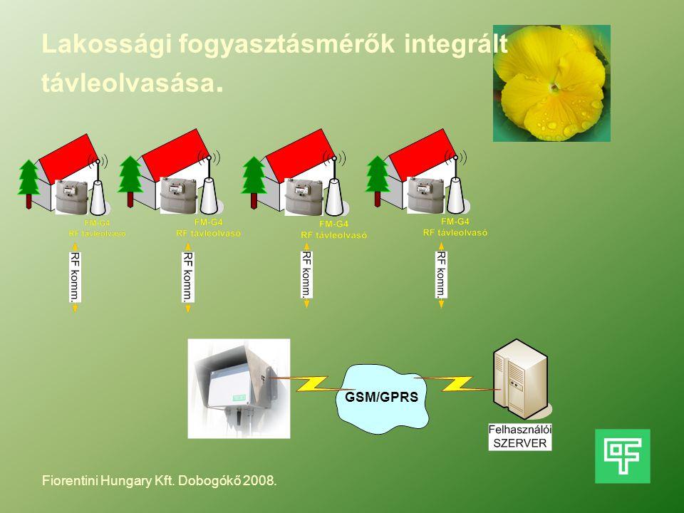 Lakossági fogyasztásmérők integrált távleolvasása. GSM/GPRS Fiorentini Hungary Kft. Dobogókő 2008.