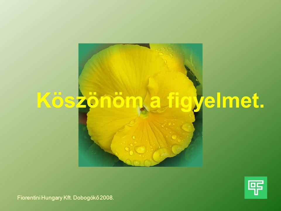 Köszönöm a figyelmet. Fiorentini Hungary Kft. Dobogókő 2008.