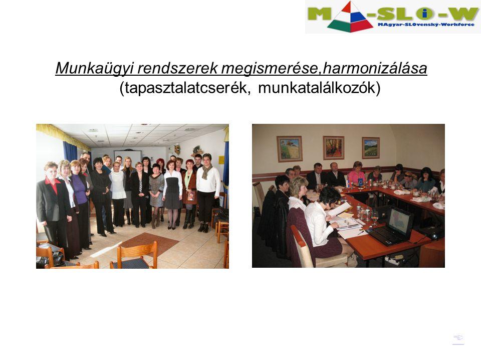 Munkaügyi rendszerek megismerése,harmonizálása (tapasztalatcserék, munkatalálkozók) 