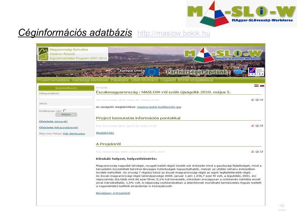 Céginformációs adatbázis http://maslow.bokik.hu http://maslow.bokik.hu 