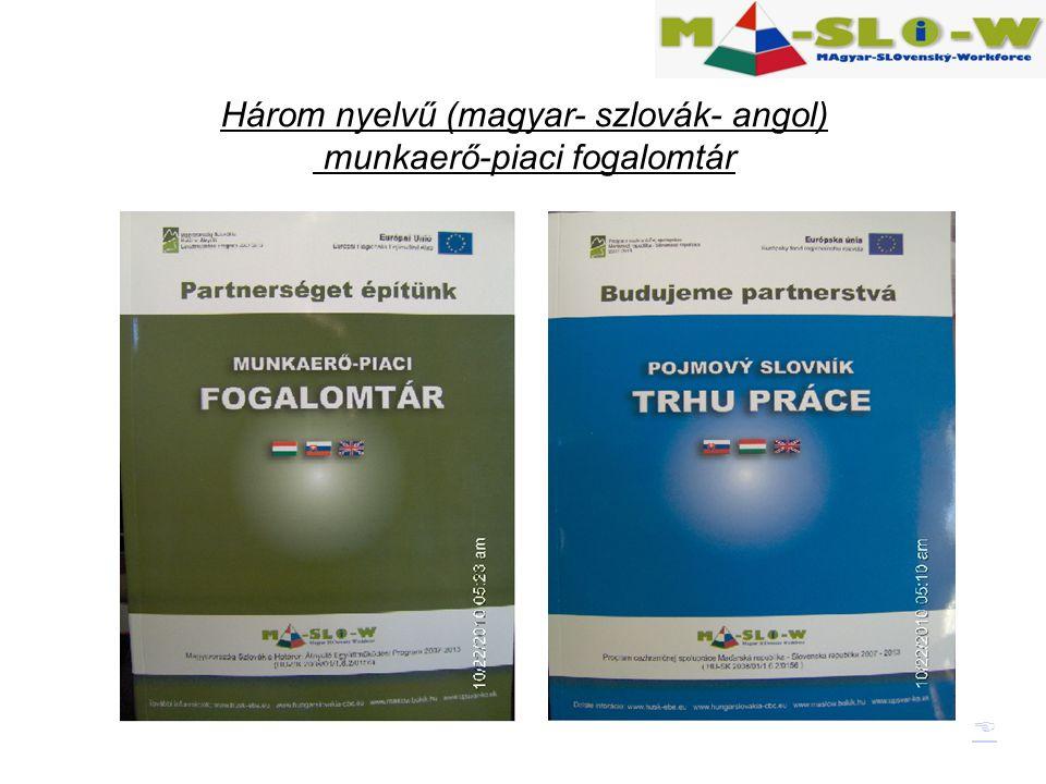  Három nyelvű (magyar- szlovák- angol) munkaerő-piaci fogalomtár