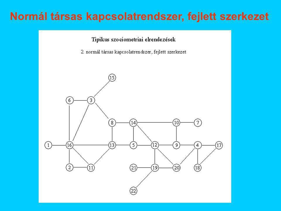 Normál társas kapcsolatrendszer, fejlett szerkezet
