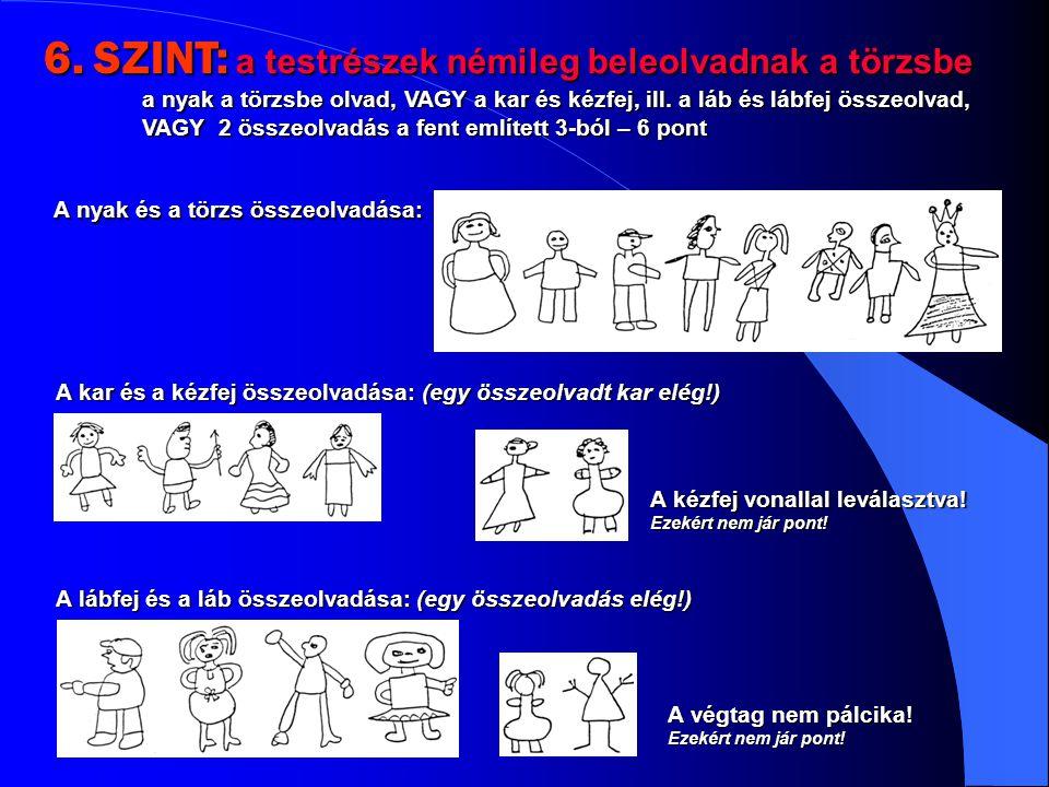 6. SZINT: a testrészek némileg beleolvadnak a törzsbe a nyak a törzsbe olvad, VAGY a kar és kézfej, ill. a láb és lábfej összeolvad, VAGY 2 összeolvad