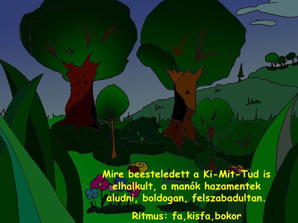 Mire beesteledett a Ki-Mit-Tud is elhalkult, a manók hazamentek aludni, boldogan, felszabadultan. Ritmus: fa,kisfa,bokor