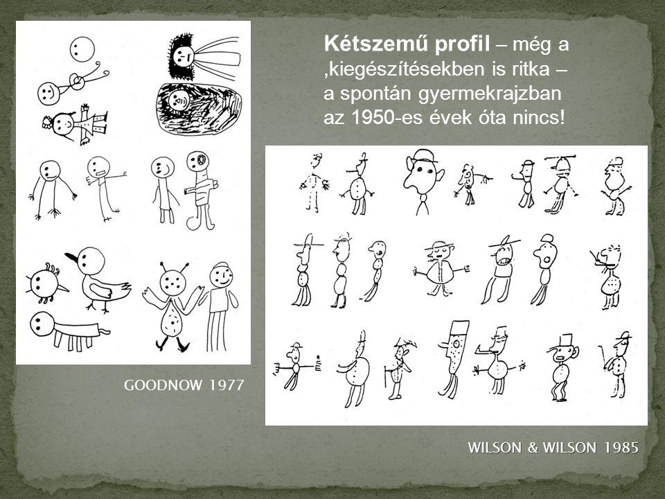 GOODNOW 1977 WILSON & WILSON 1985 Kétszemű profil – még a,kiegészítésekben is ritka – a spontán gyermekrajzban az 1950-es évek óta nincs!