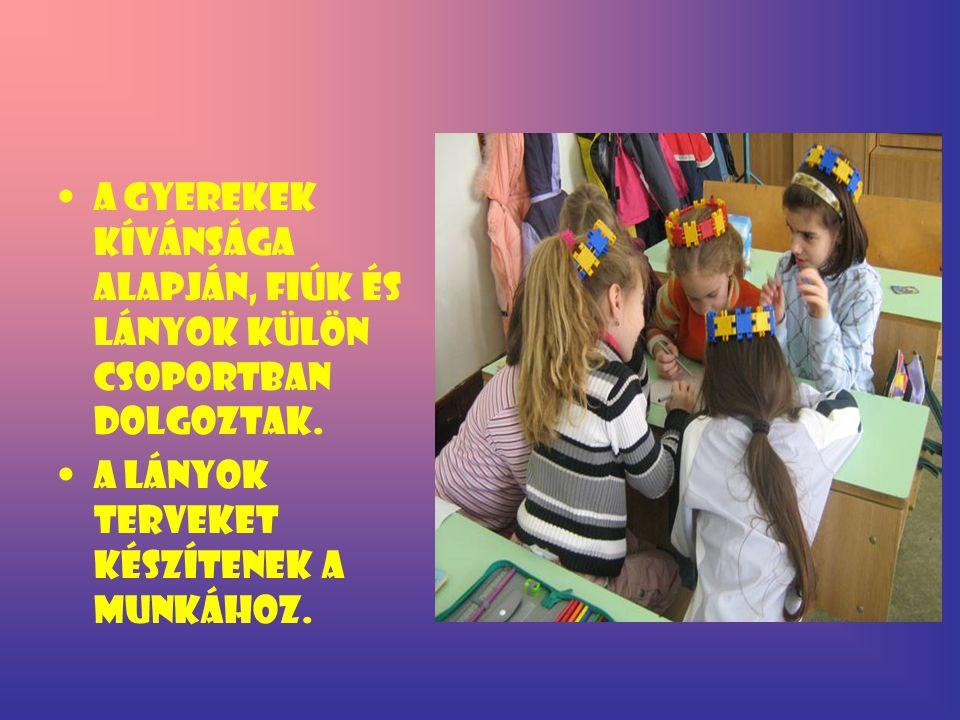 A gyerekek kívánsága alapján, fiúk és lányok külön csoportban dolgoztak. A lányok terveket készítenek a munkához.