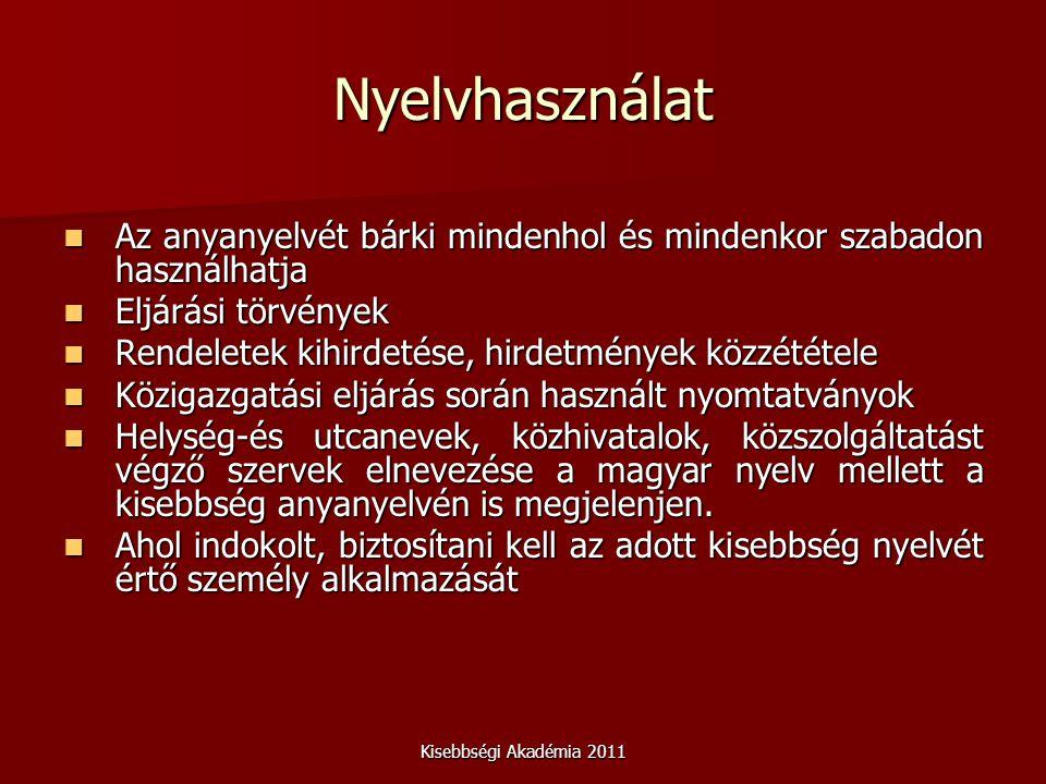 Kisebbségi Akadémia 2011 Nyelvhasználat Az anyanyelvét bárki mindenhol és mindenkor szabadon használhatja Az anyanyelvét bárki mindenhol és mindenkor