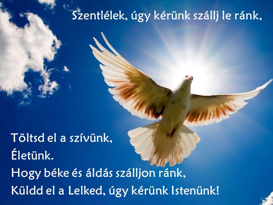 Szentlélek, úgy kérünk szállj le ránk, Töltsd el a szívünk, Életünk. Hogy béke és áldás szálljon ránk, Küldd el a Lelked, úgy kérünk Istenünk!